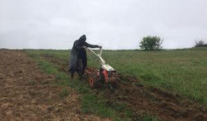 Motobineuse et motoculteur ont un même but : retourner la terre pour préparer les plantations